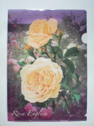 繊細なタッチで描かれた、薔薇柄のクリアファイルですv(^^)  ゴージャスで優雅な雰囲気のお洒落なアイテムですね♪