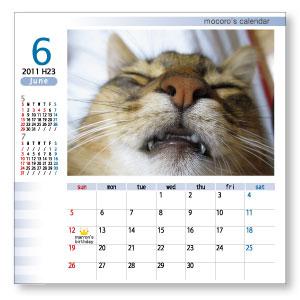 想い出の写真で作るオリジナルiカレンダー☆ いつでも見られる卓上カレンダーに大好きな家族やペット、楽しかった想い出の写真を入れて疲れた時にもホッと一息♪ 毎日がもっと楽しくなっちゃいます♪ 『Bタイプ』は自慢の写真を目立たせる、写真のスペースの大きなタイプです☆ オリジナルカレンダーでも写真のインパクトを楽しんじゃおう♪