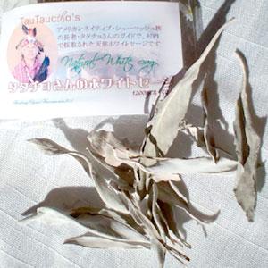 ストーン、アクセサリー浄化用セージ。アメリカ先住民シューマッシュ族の村で採取した、正真正銘の天然ホワイトセージ!5g入り。数量限定です!!  流通しているホワイトセージはアメリカ国内で栽培されたものがほとんどです。 今回数量限定で入荷したホワイトセージは、アメリカ先住民シューマッシュ族の村で、長老のタタチョさん自ら採取された、野原に自生している天然のセージです。 直接ルートで入手していますので、日本国内ではほとんど入手不可能です。  波動が穏やかで、香りがとてもやわらかくやさしいのが特徴。天然なので、もちろん無農薬。今までセージの香りが苦手だった方も、これはきっと大丈夫ですョ! 数量限定なのでお早めにご注文ください!   ※なお、売り上げの一部は、タタチョさんの村≪エコ・ビレッジ≫の建設費用として役立てられます!