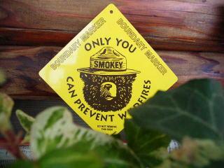アメリカ合衆国の森林火災予防運動のマスコットとして 1944年に登場したスモーキーベアー。 こちらはアルミの板にプリントされたミニプレート 実際にアメリカで使用されている物です。 お庭の木や お部屋のちょっと大きめな観葉植物の幹に紐などで結んで下さい♪