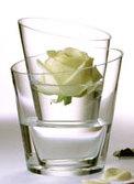 デンマークのデザイン会社menu社(メニュー)のガラス花瓶。 バラの花をモチーフに、モダンにデザインされた形違いの花瓶2個のセット。 中に入れる水の量を調節して立体感のあるフラワーアレンジメントに。 それぞれの花瓶を単品で使用しても、スタイリッシュ。  花瓶に水を入れられないアートフラワー(造花)も、 外側にさえ水を入れれば、生花のように瑞々しく演出できます。  又、内側の花瓶にキャンドルを入れ、外側の花瓶に水を入れれば、 まるで水の中で、キャンドルの炎が揺れているよう。 クリアガラス製なので、色付きの水を入れても美しい。  デザイナーPernille Veaのネーム入り。 花瓶を2つ重ねるときに衝撃を吸収してくれるシート入り。花瓶の底に入れて使用。