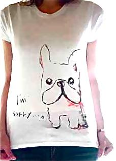 くれよんで書いたようなやわらかいタッチのフレブルTシャツです。